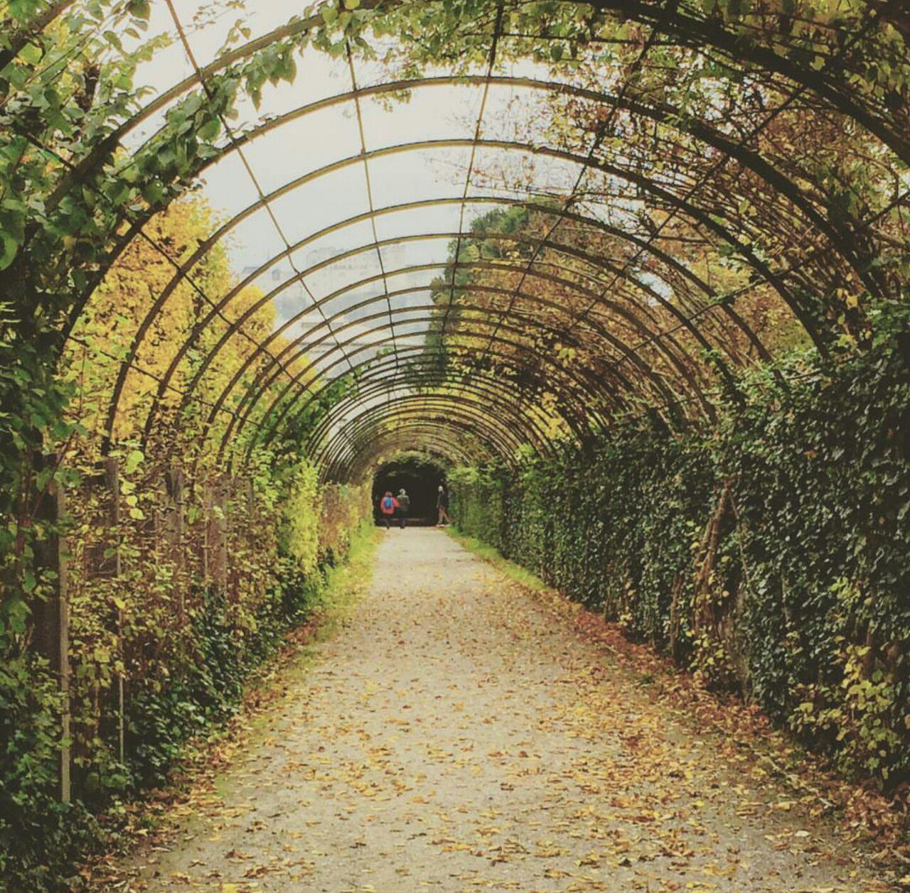Mirabell Bahçeleri