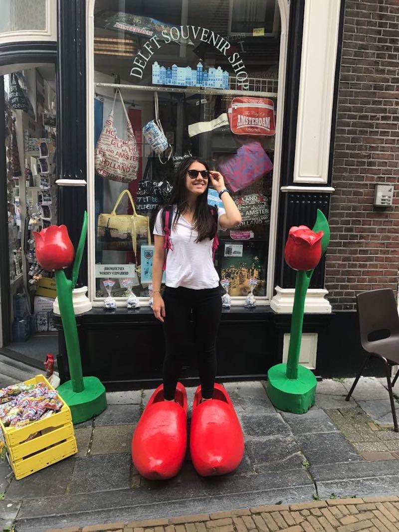 Hollanda'da İş Bulma Rehberi