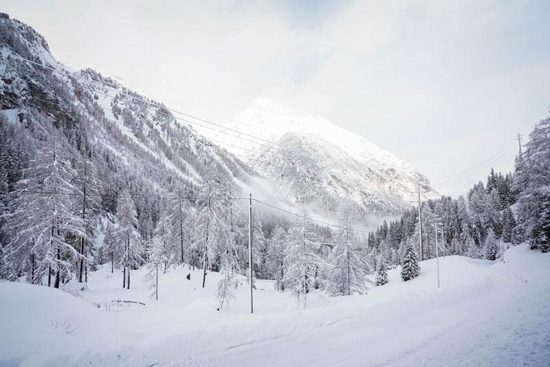 Bernina Treni
